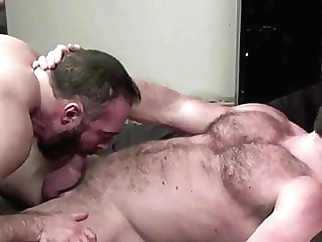 Big beefy bearded bears bareback gay porn (gay) bareback (gay) bear (gay)